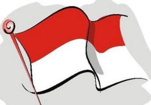 mengibarkan-bendera-merah-putih_articleimage