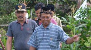 panen semangka lpp nu kayong kabupaten  utara oleh haji samadikun dan wakil bupati idrus dan para tokoh masyarakat sukadana simpang hilir dllf