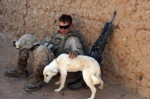 U.S._Marine_pets_dog_in_southern_Marjah