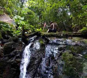 hutan desa tanjung beulang 3_warta kayong