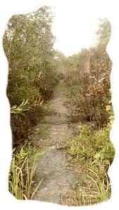 misteri tikungan mentubang Rantau Panjang kayong utara hantu mengerikan