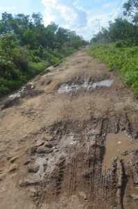 jalan ampera rantau panjang kayong utara Jalan Berlumpur di Musim Hujan 2014