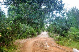 jalan menuju jembatan kali alam yang angker di telaga arum kecamatan seponti kayong utara 2015