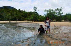 nelayan tradisional di pasir mayang sedang menjala ikan di sela sela hutan mangrove
