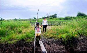 kisah Dua Sejoli dari satai  yang setia 2015